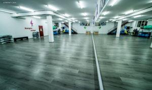 Stayfit gym -2- titulescu - brut (83)
