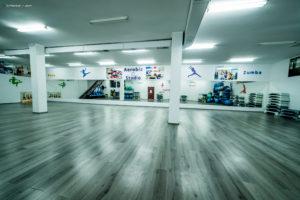Stayfit gym -2- titulescu - brut (85)