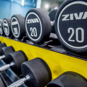 12 03 2019 - StayFitGym Cocor (43)